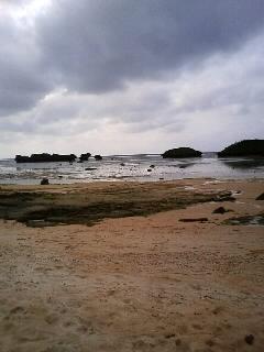 四日目  西表島 その2